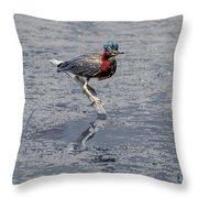 Green Heron In Swannanoa North Carolina Throw Pillow