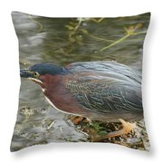 Green Heron On The Lookout Throw Pillow