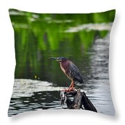 Green Heron Perch Throw Pillow