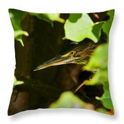 Green Heron Pictures 430 Throw Pillow
