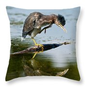 Green Heron Pictures 488 Throw Pillow