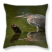 Green Heron Pictures 491 Throw Pillow