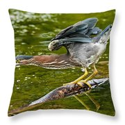 Green Heron Pictures 522 Throw Pillow