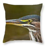 Green Heron Pictures 548 Throw Pillow