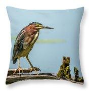 Green Heron Pose Throw Pillow