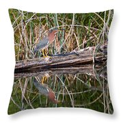Green Heron Reflections Squared Throw Pillow