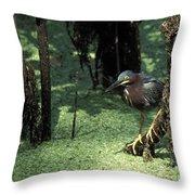 Green Heron Throw Pillow by Steven Ralser