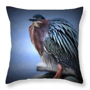 Green Heron Vignetted  Throw Pillow