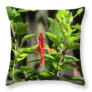 Green Hummingbird On Red Hibiscus Flower 2 Of 10 Throw Pillow