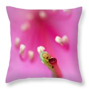 Green Jelly On A Rhododendron Throw Pillow