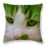 Green Kitten Throw Pillow