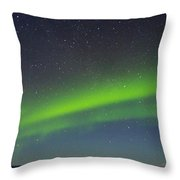 Green Lady Dancing 15 Throw Pillow