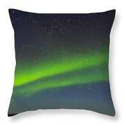 Green Lady Dancing 16 Throw Pillow