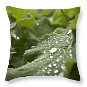 Green Leaf And  Fresh Water Pearl Throw Pillow