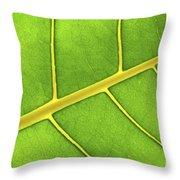 Green Leaf Close Up Throw Pillow