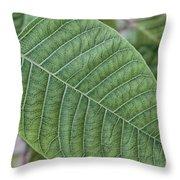 Green Leaf Macro Throw Pillow