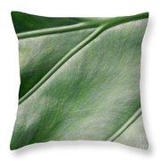 Green Leaf Up Close 2 Throw Pillow