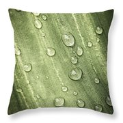 Green Leaf With Raindrops Throw Pillow
