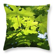 Green Leaves Canvas Throw Pillow