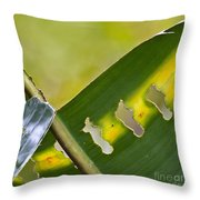 Green Leaves Series  5 Throw Pillow