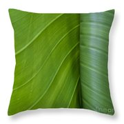 Green Leaves Series  6 Throw Pillow