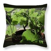 Green Light Throw Pillow