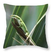 Green Lizard Throw Pillow
