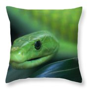 Green Mamba 2 Throw Pillow