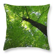 Green Maple Canopy Throw Pillow