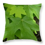 Green Maple Leaves Throw Pillow
