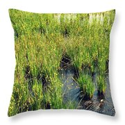 Green Natural Beauty Throw Pillow