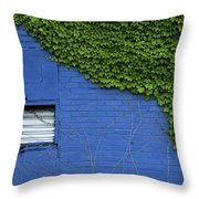 green on blue IMG 0964 Throw Pillow