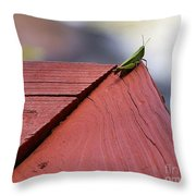 Green On Red Throw Pillow