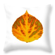 Green Orange Red And Yellow Aspen Leaf 1 Throw Pillow