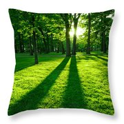 Green Park Throw Pillow by Elena Elisseeva