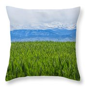 Green Pastures Throw Pillow