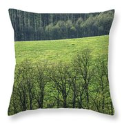 Green Peace Throw Pillow by Davorin Mance