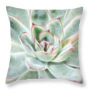 Green Pink Succulent Glow Throw Pillow by Beth Sawickie