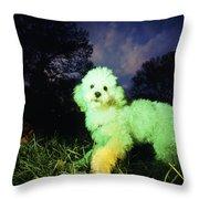 Green Poodle Throw Pillow