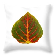 Green Red And Yellow Aspen Leaf 4 Throw Pillow