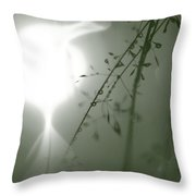 Green Reflection Of Grass And Drops Throw Pillow