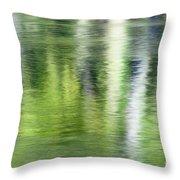Green River Reflections Throw Pillow