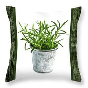 Green Rosemary Herb In Small Pot Throw Pillow