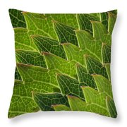 Green Scales Of A Dragon Throw Pillow