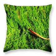 Green - Seaside Abstract Throw Pillow