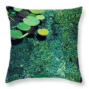 Green Shimmering Pond Throw Pillow