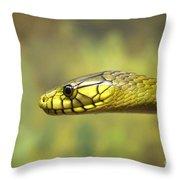 Green Snake. Throw Pillow