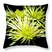 Green Spider Mums Throw Pillow