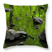 Green Stream Throw Pillow