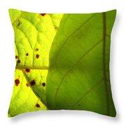 Green Sunlight Throw Pillow